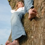 barefoot-soles-tree